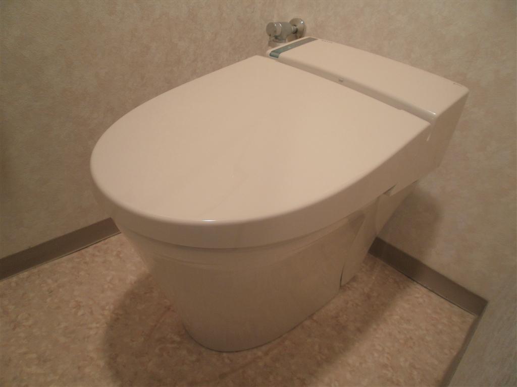 うちのマンションのトイレは壁からの排水なんです。上層階 1