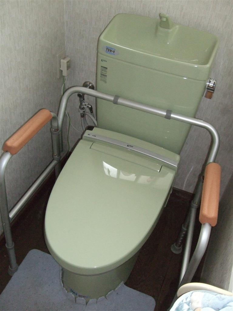 家の全面改装を考えております。 1Fトイレ・廊下手すり・排水