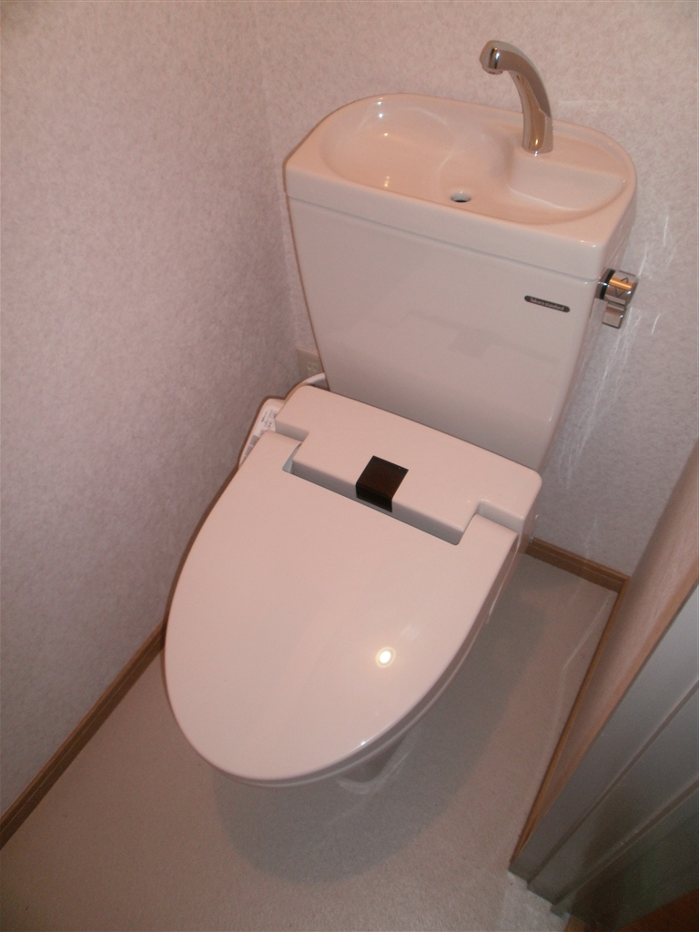この家でこれからも暮らしていくので・・・1F トイレ