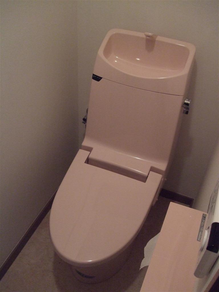 建直せない!と、すると・・・トイレ