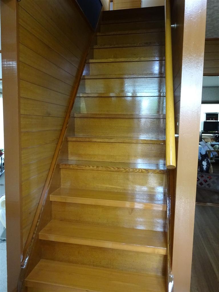 階段をきれいに♪もう噛ませません! 全体