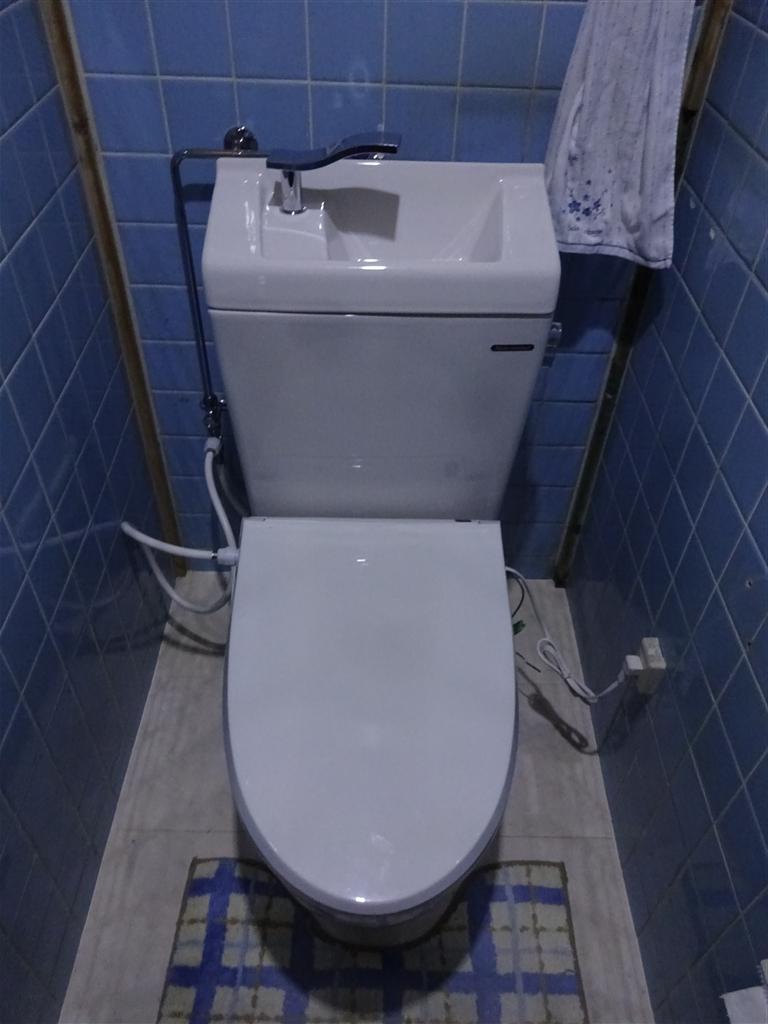 この家で暮らしていくしか・・・トイレ取替え