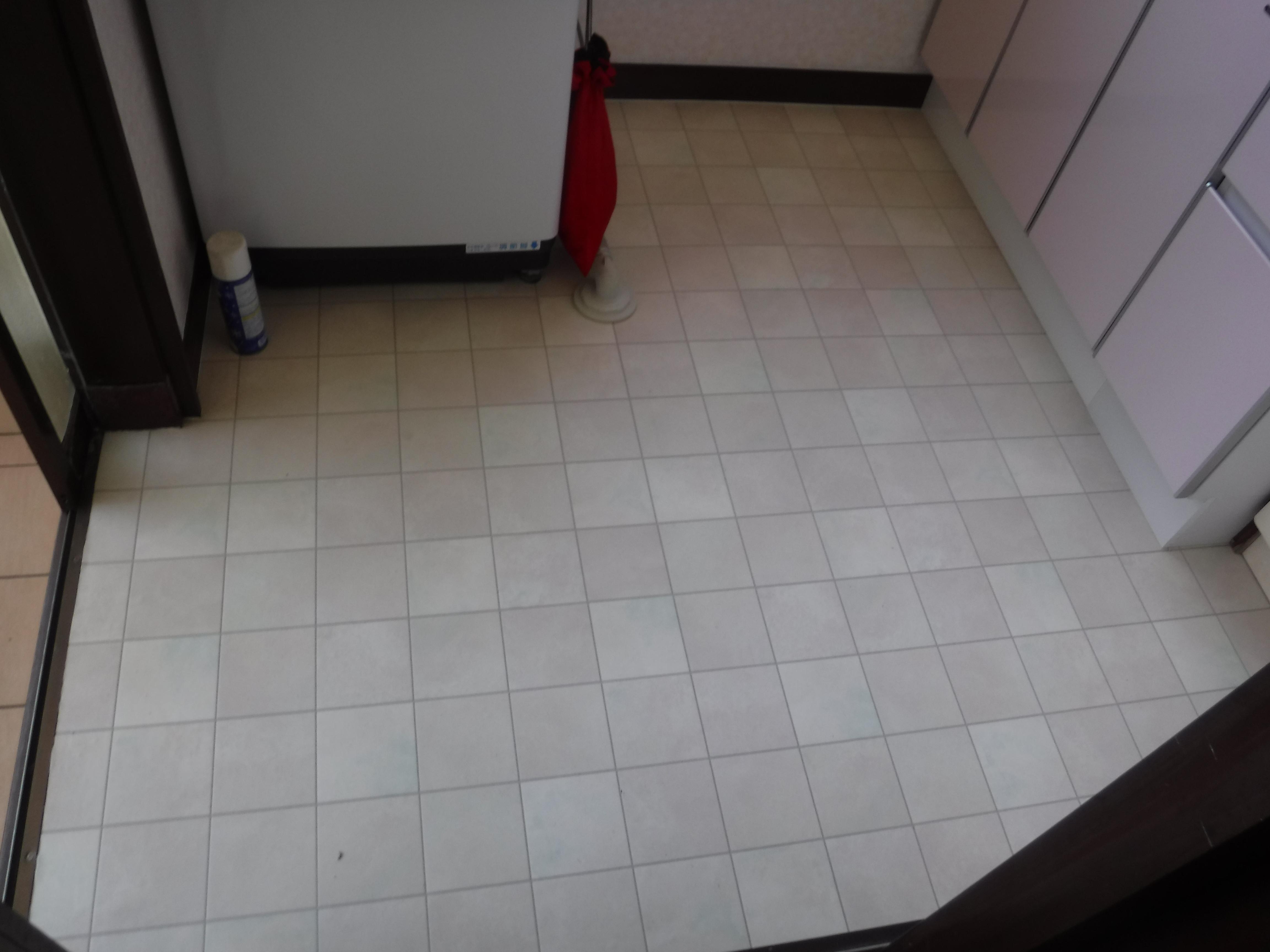 浴室の補修費用を抑えたので、脱衣場改装♪全体