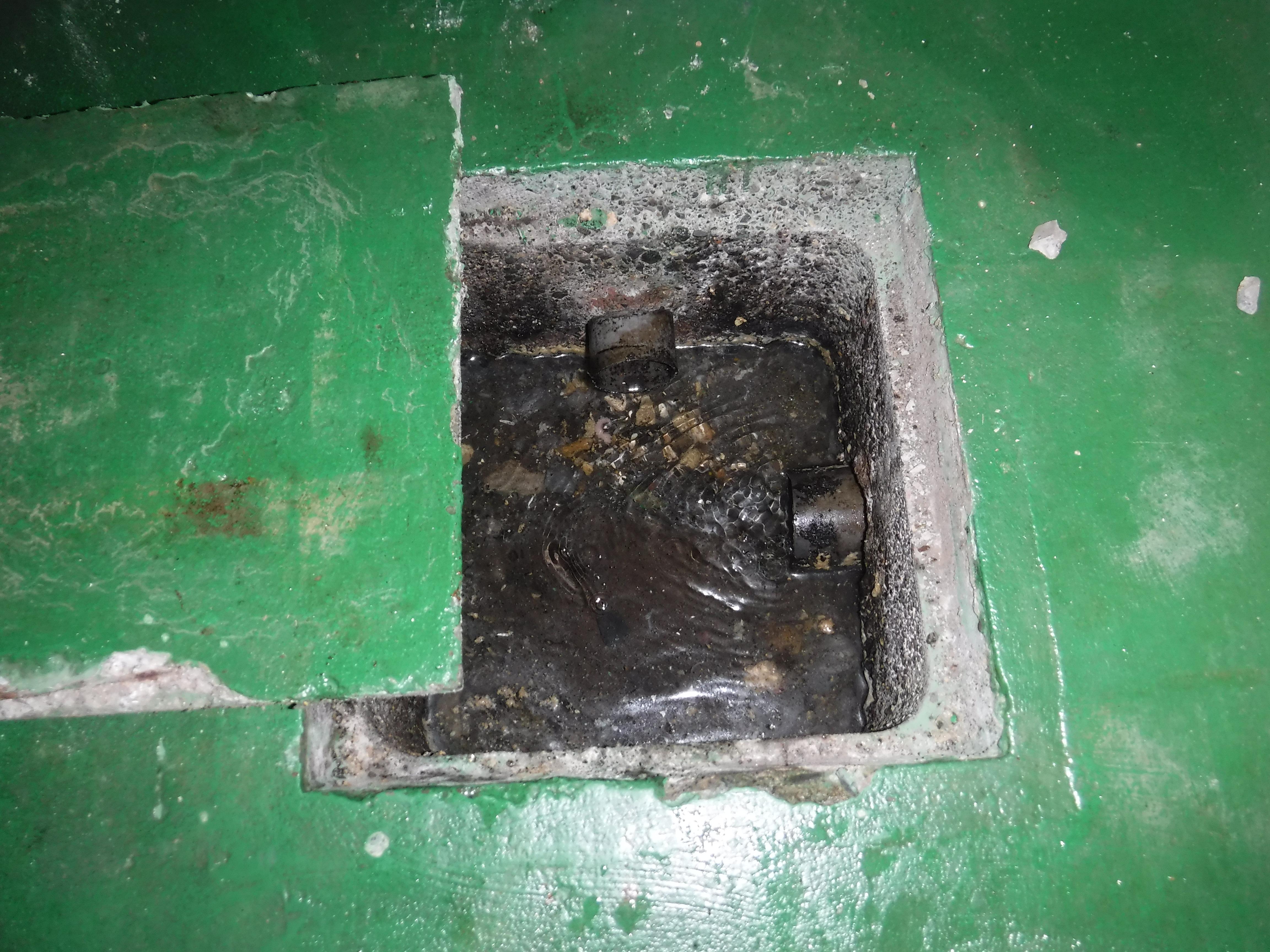 お店をやるので・・・PAKU×2(パクパク)排水管清掃