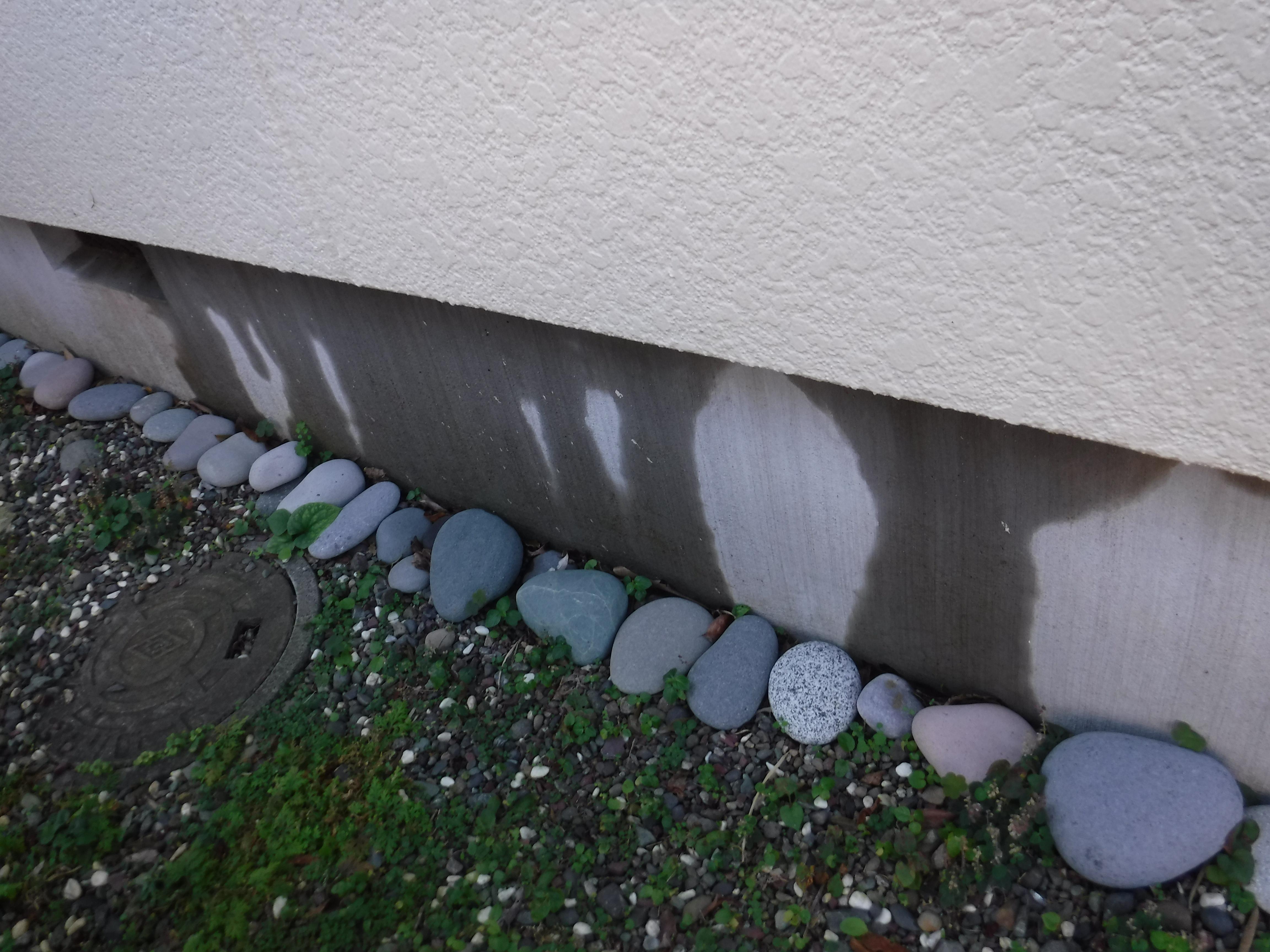 脱衣場の外側の壁が・・・漏水?点検・現状